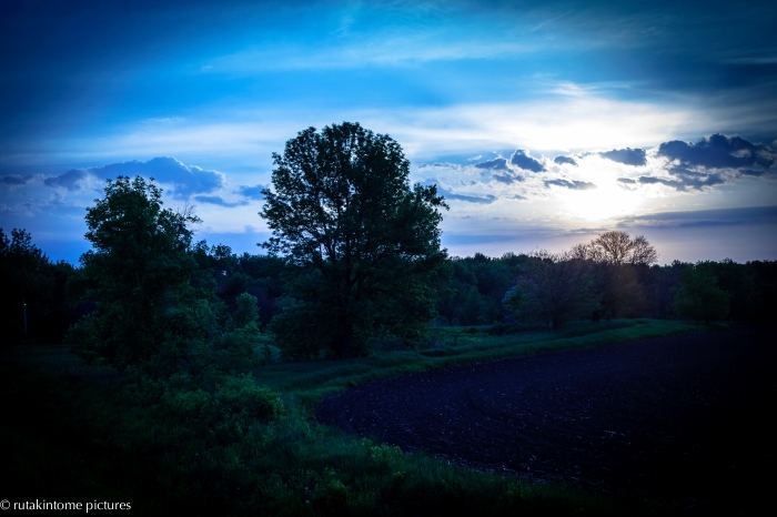 Taken on one of my rides in the country. I was working on this image and just was not happy with any results. Finally changes the white balance and this is the result. Blue is my favorite color!