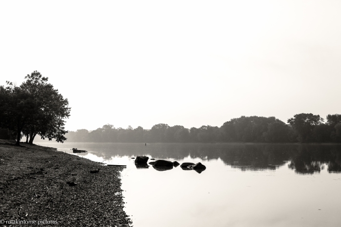 It was foggy in the area this morning, with almost no wind and a peaceful river...