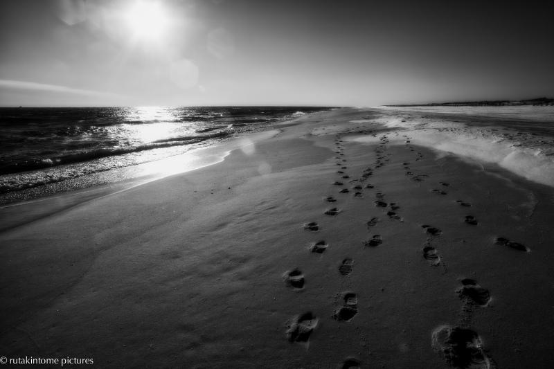 winter's dreamy shore