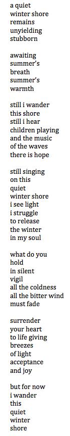 a quiet winter shore