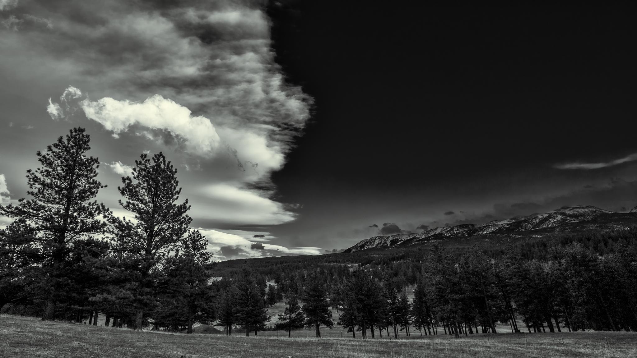 montana 2016 5