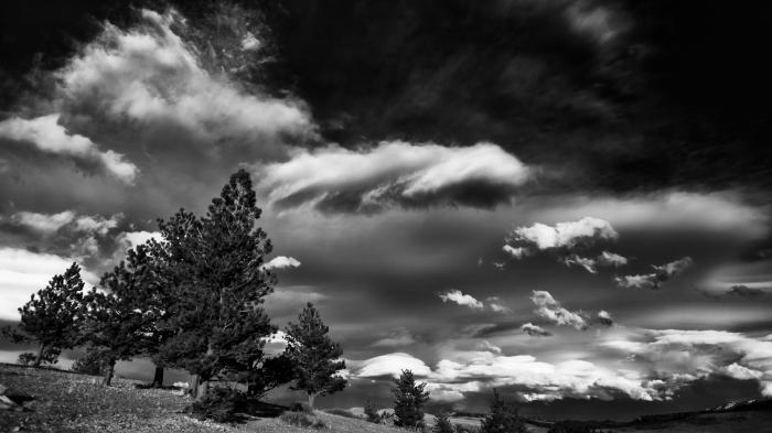 montana 2016 6